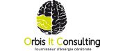 Orbis logo.jpg